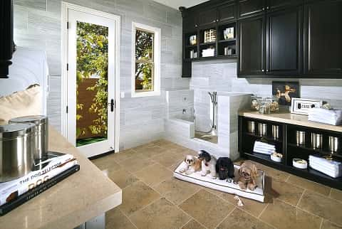 A high-end elegant and stylish pet suite, built to make all kinds of pets comfortable.