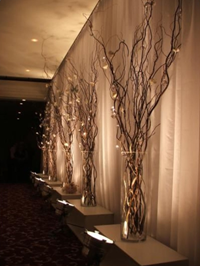 Knot and Nest Designs Lighted Tree Branches sitting in large glass vases.