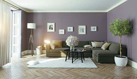 A living room has lavender walls, a sofa, a flower arrangement on the coffee table and a small tree on the side.