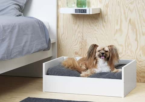 The Lurvig Frame with pet cushion is a simple rectangular white bed frame. A cushion adds comfort for pets.