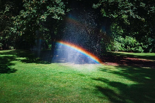 Pros and Cons of Installing a Sprinkler System | NewHomeSource