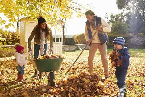 Two young African American children help their mom and dad rake up leaves in the yard during fall.