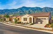 Overview of Cortina at Terramor community by Del Webb Homes.