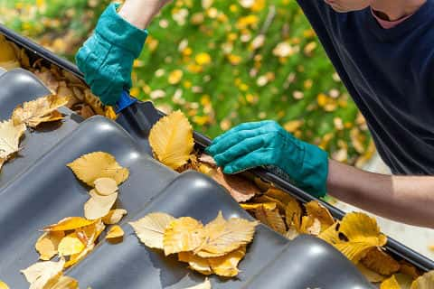 Man cleaning the gutter from autumn leaves.